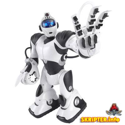 robots.txt для Datalife Engine