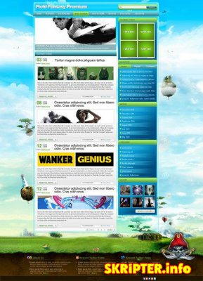 Тема для Wordpress- Field Fantasy