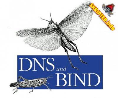 Установка Bind, настройка Bind на CentOs 5.2