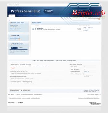 Шаблон Professional Blue