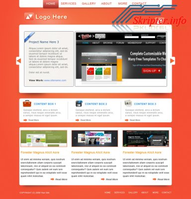 Smashing Portfolio Website Template PSD