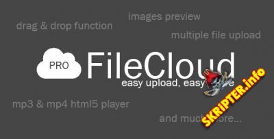 FileCloud PRO v1.4