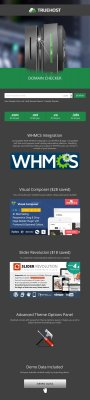 Truehost v1.0 + WHMCS – шаблон хостинга для WordPress
