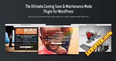 SeedProd v5.5.4 - Comming Soon Wordpress Plugin