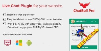 ChatBull Pro v4.2.3 (исправлена лицензия) - скрипт чата поддержки