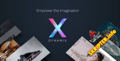 DynamiX v7.3 - бизнес тема для Wordpress