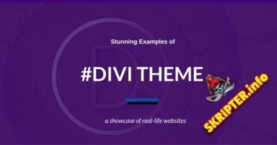 Divi Theme v4.7.7 Rus – универсальный шаблон для WordPress