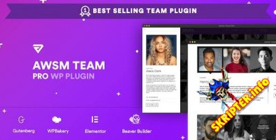 The Team Pro v1.8.1 - плагин WordPress для демонстрации команды